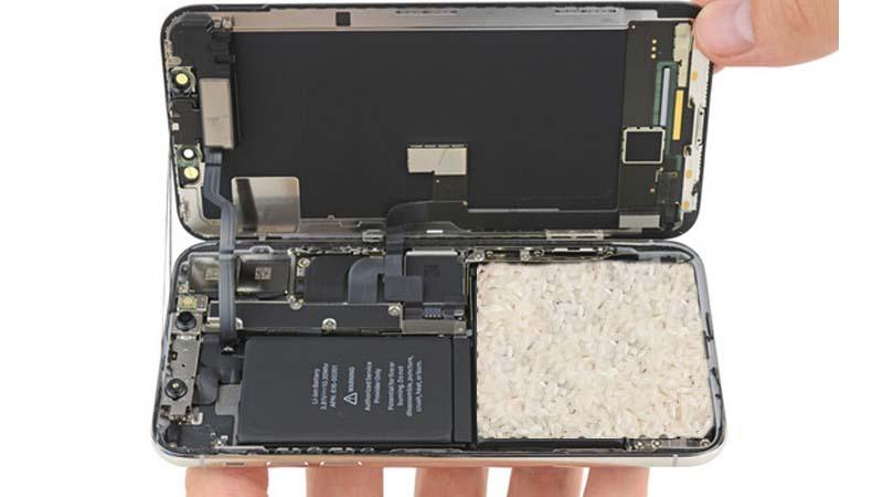 El nuevo iPhone tendrá un compartimento con arroz dentro por si se te cae al WC